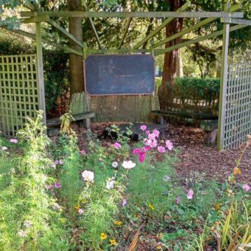 Kitchen-garden-corner